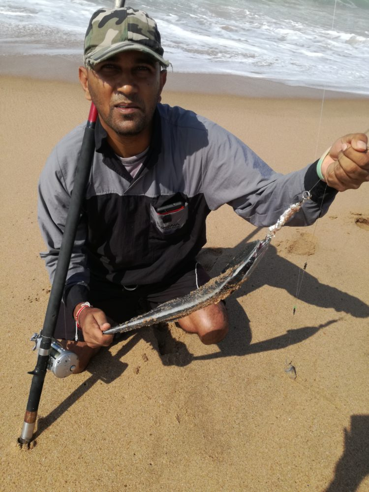caught with sardine belly…. that's a Remora, a prized catch… no pun on the prize d