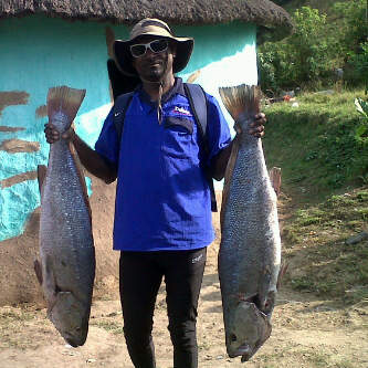 My friend caught these lovely dagga's at Brazen Head recently.His 1st big catches on live kara