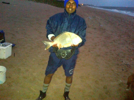 2kg stumpie caught by shalvin at beachwood on light tackle stumpie
